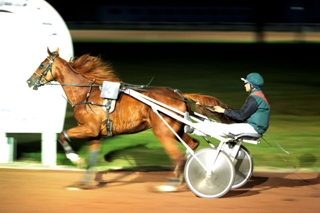Six courses au trot attelé figurent au programme...|Photo © Jean‐Paul Epinette ‐ icimedia@free.fr