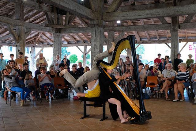 Résonances : une harpe et une barrière, un homme et une femme, des accords et désaccords...|Photo © jean-Paul Epinette - icimedia@free.fr